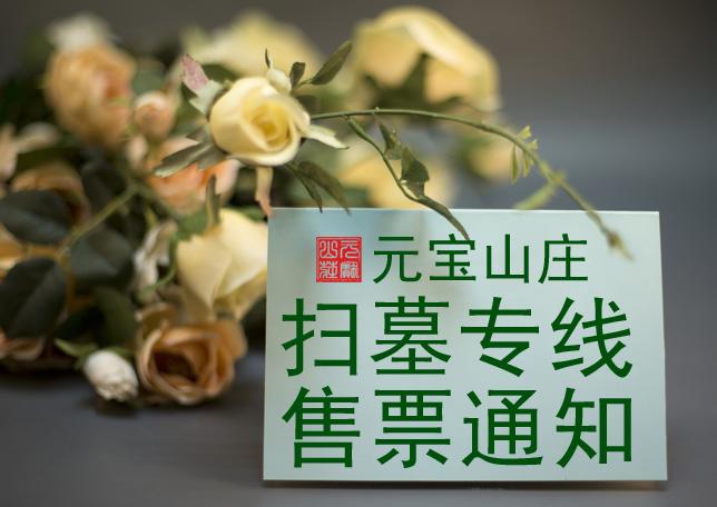 金鼎客运开通元宝山庄清明祭扫专线